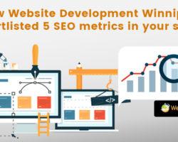 How Website Development Winnipeg Shortlisted 5 SEO Metrics In Your Sight