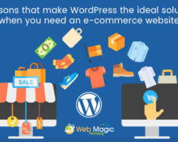 Reasons That Make WordPress The Ideal Solution When You Need An E-commerce Website
